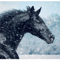 Lloyds Banking Group Christmas card